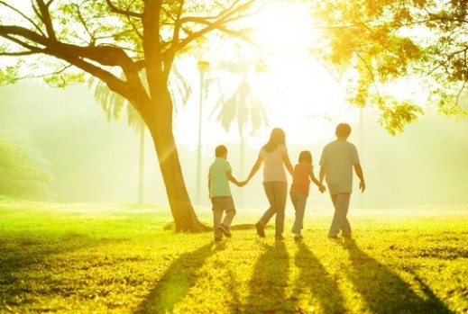 Family of four take a walk under the trees in the setting sun