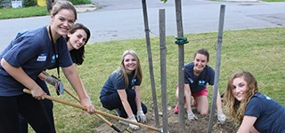 interns giving back to the community by planting new trees